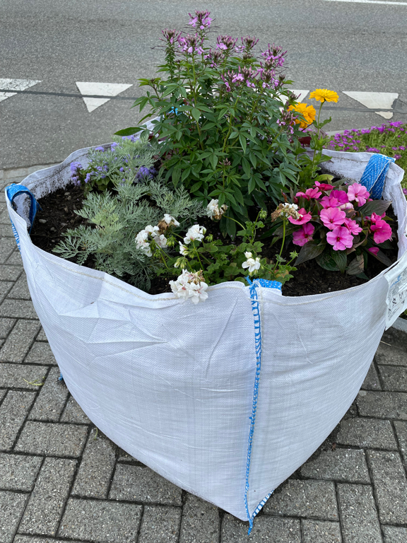 Temporarily flower pots in the city. I need something nice to get into a better mood :-(